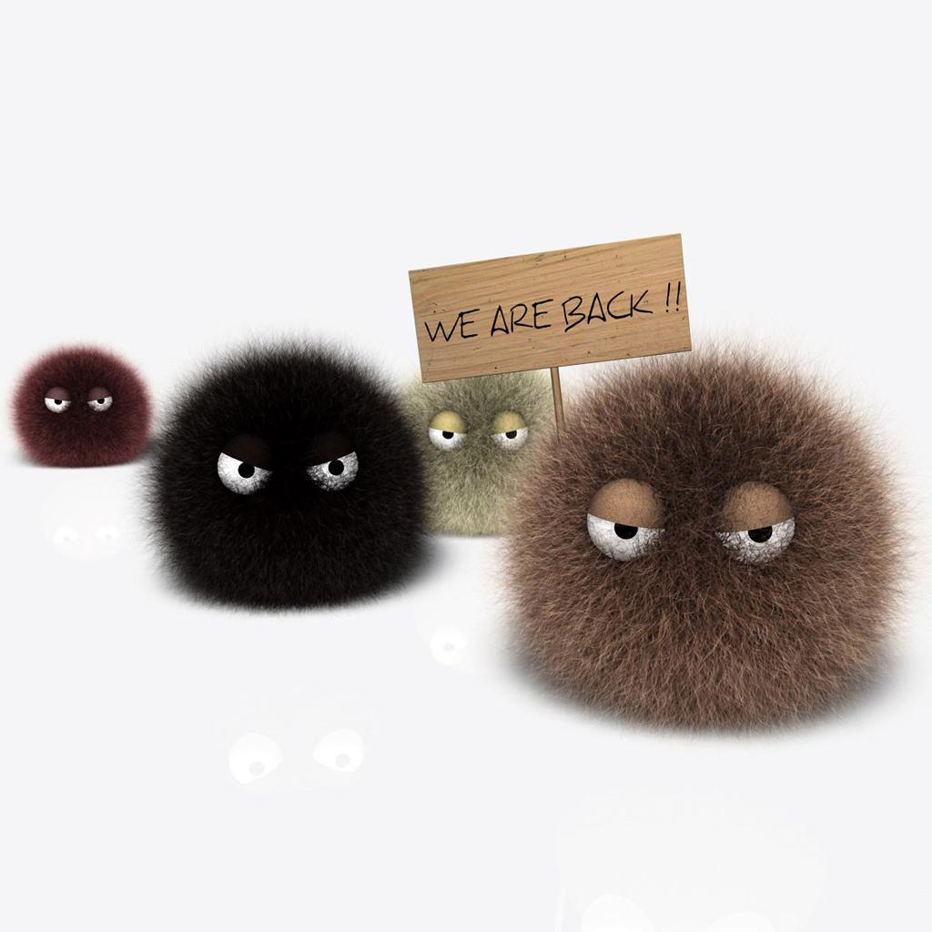 Furry Balls