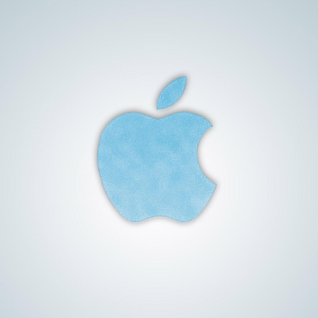 Apple Logo Frozen