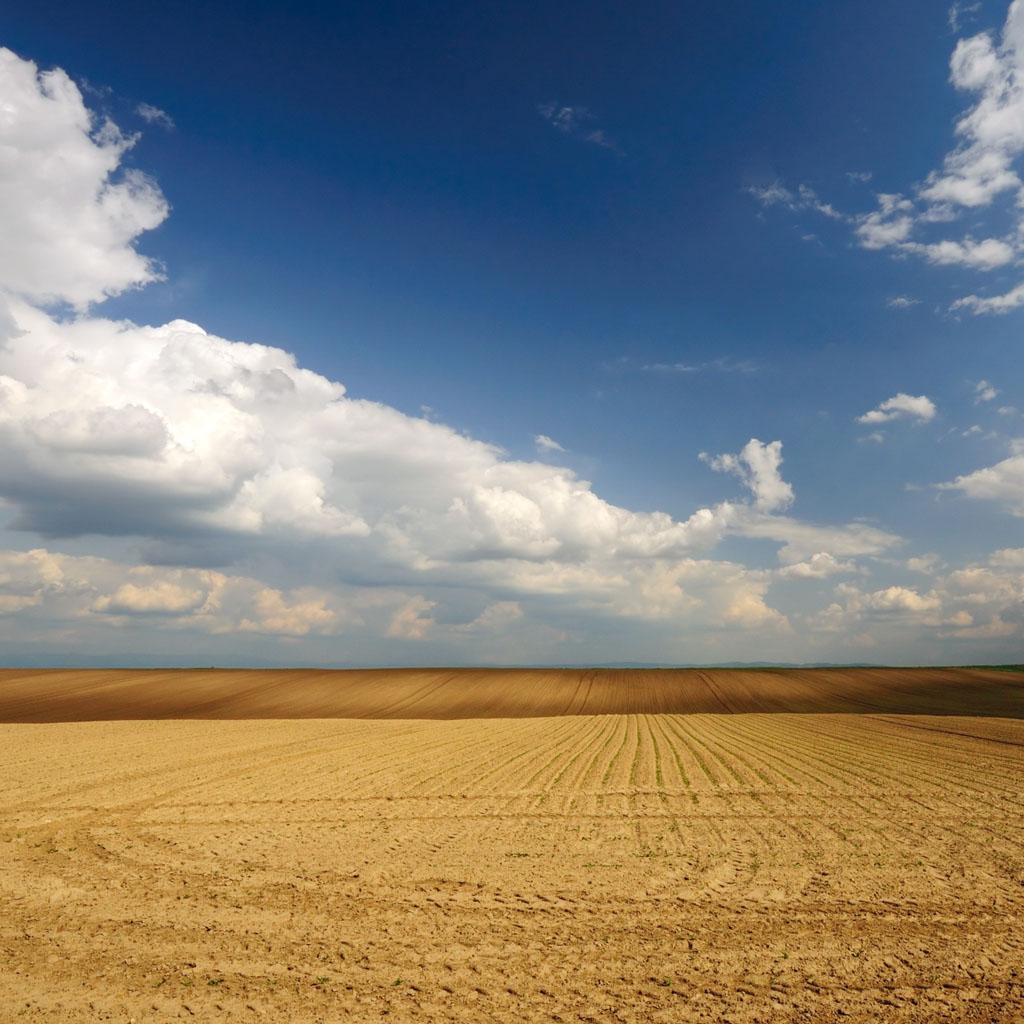 Land to Sky