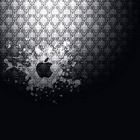 Apple Logo Splash